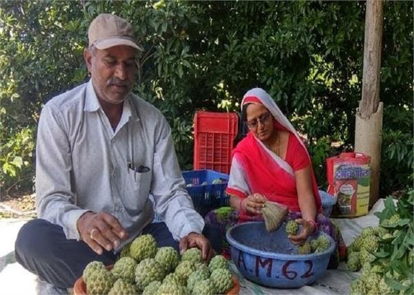 ऑर्गेनिक फार्मिंग से महीने में लाखों कमा रही है यह महिला किसान