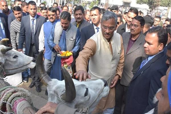 cm launches crushing session