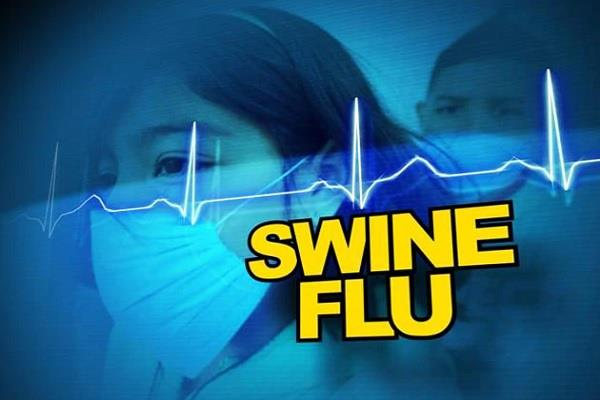 swine flu spread in mandsaur 5 dead