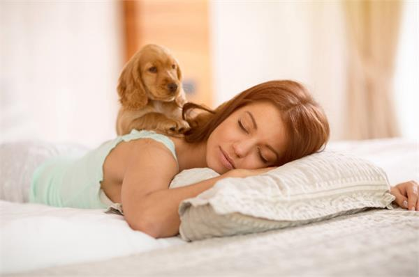 discovered in research instead of partners women take dogs with more sleep