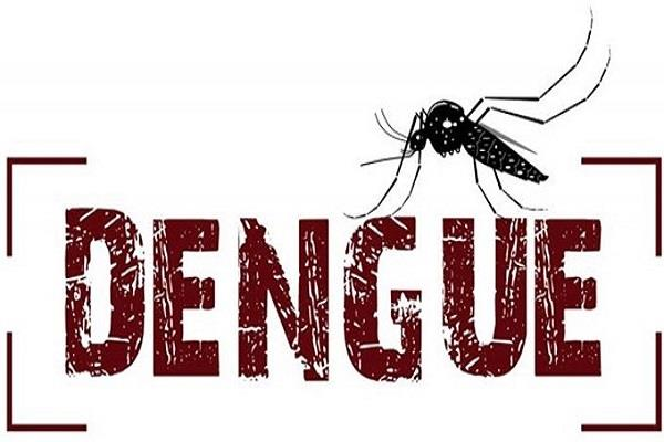 dengue panic after swine flu doctor s death