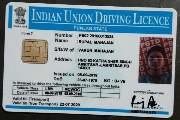 driving license issued by singapore girl from amritsar