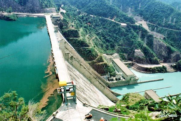 pong displaced will be rehabilitated in himachal