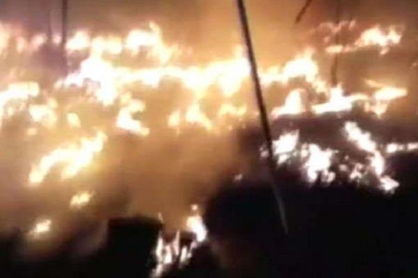 gujarat  rajkot  fire