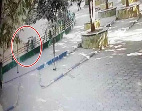 a man jumped into lion enclosure