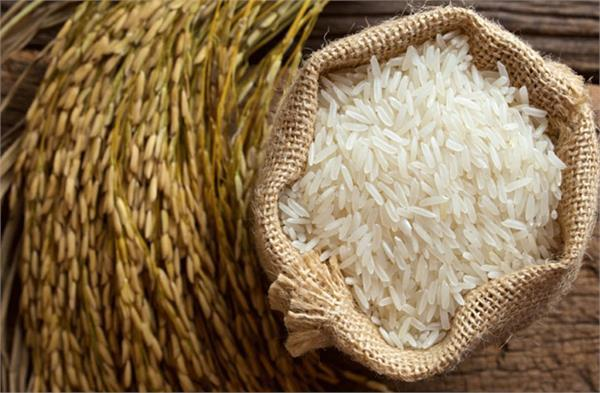 india records rice export