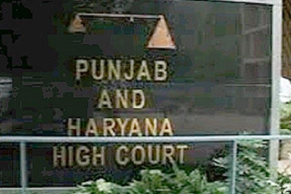 helmets to related    haryana chandigarh sought time for hc
