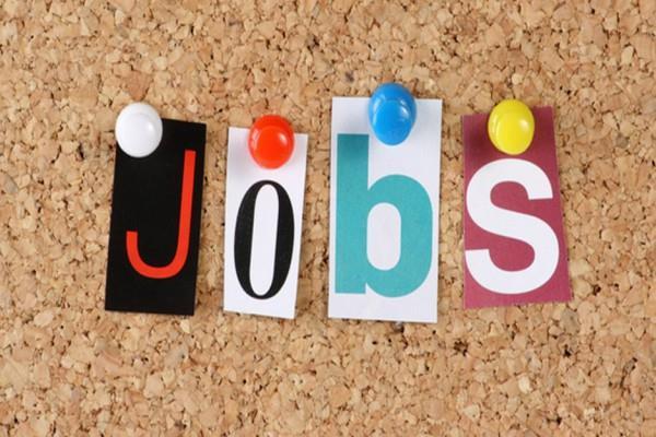 job  candidate  salary  karnataka forest department