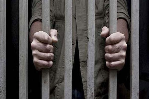 7 year imprisonment for wrong doing