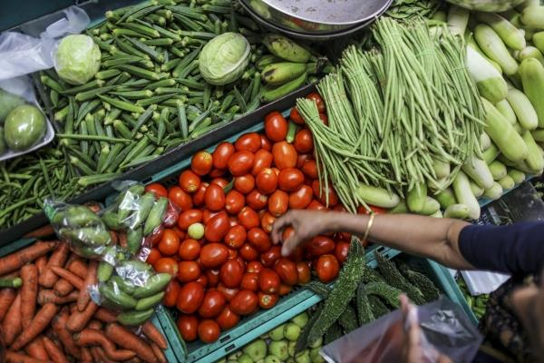 need to ensure access to nutritious food to people  assocham