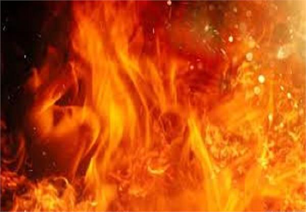 ghaziabad  a fierce fire in a dairy  and a dozen animals seriously scorched