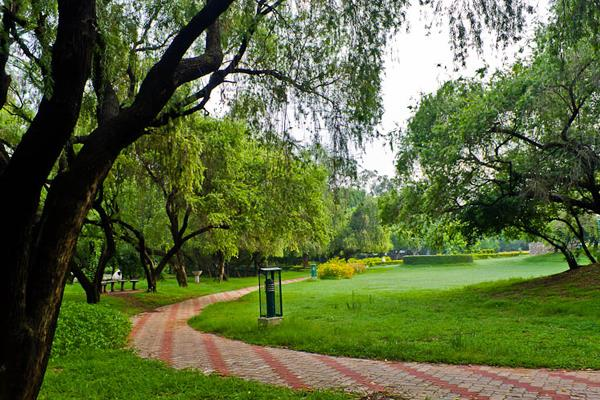stock took administrator parks city