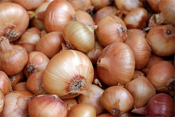 minimum export price limit for onion
