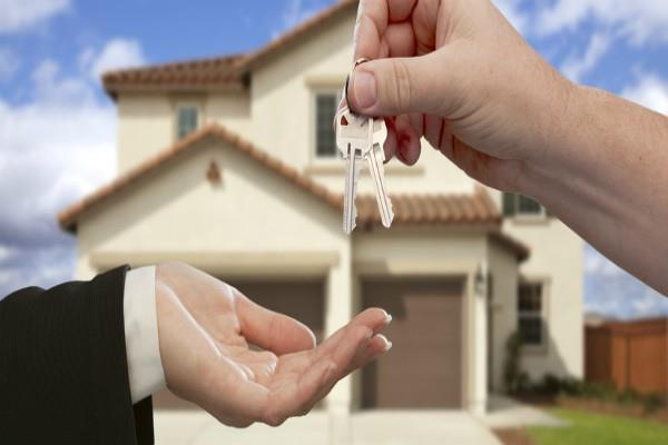 property turnover in noida and greno dropped 50 percent