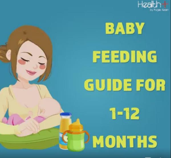baby feeding guide for 1 12 months