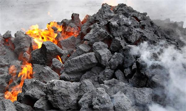 private companies will get excavation of coal and exemption on trade