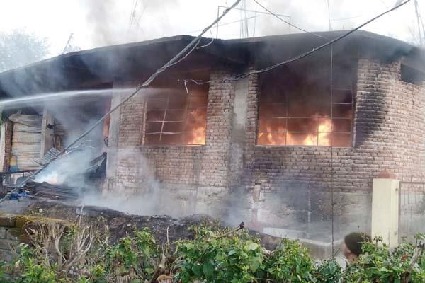 pancharukhee trent house store ash