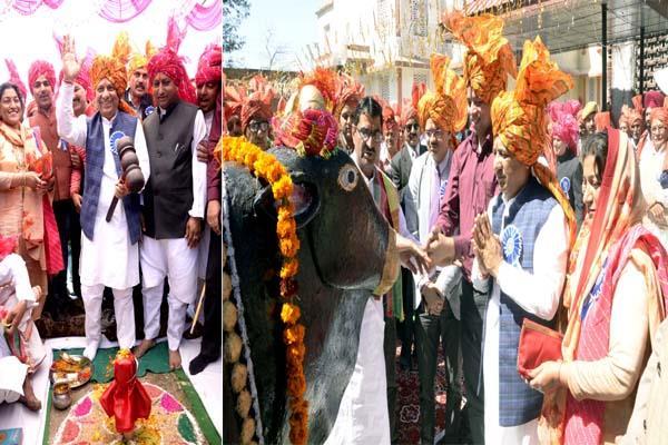 state level nalwadi fair beginning with worship of bull
