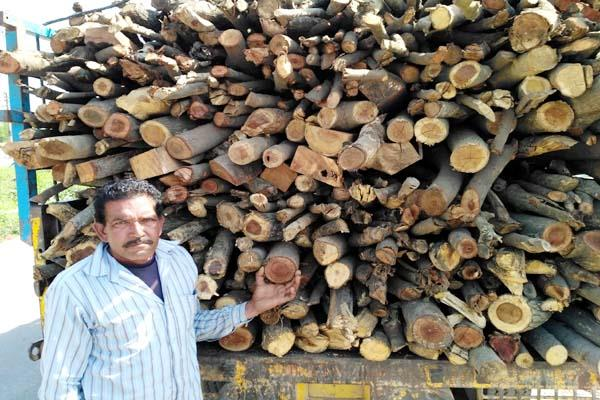 full of wood tractor trolley seized on check post forest department take action