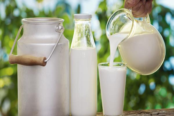 milk production rose 20 in 2014 2017 to 165 4 mn tonnes agri min