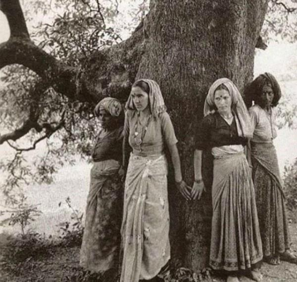 know what is the chipko movement