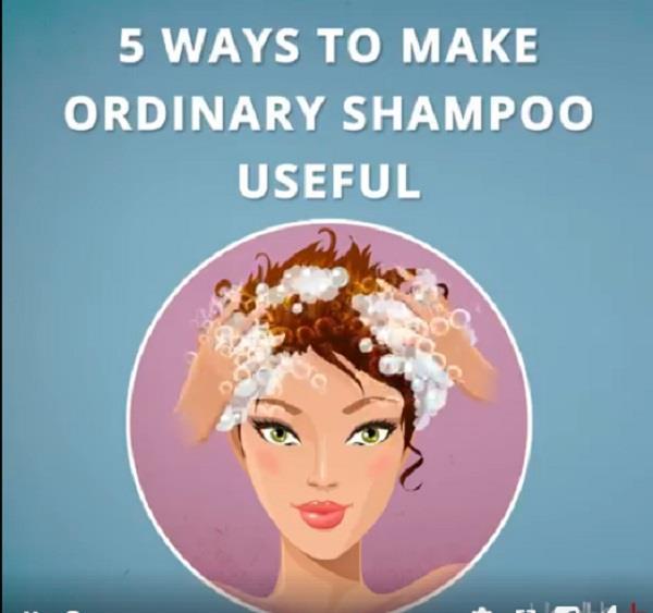शैंपू में मिलाकर लगाएं ये 5 चीजें, बाल हों जाएंगे लंबे और घने
