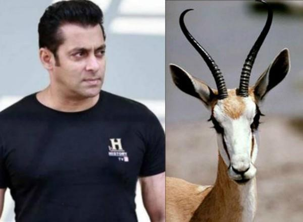 prophecies of the astrologers going to jail in salman were right