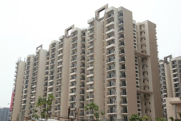 50 percent reduction in property purchases in noida