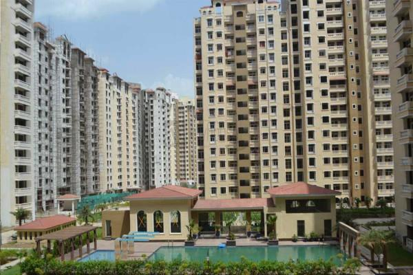 sc asked questions to the amrapali builder