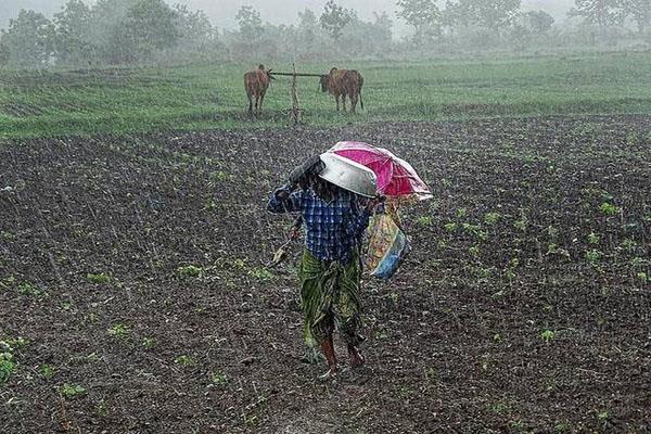 this year will not drought from june to september 100 rain