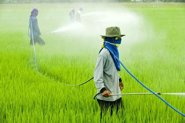 new pesticide bill should be given equal opportunities to indian companies