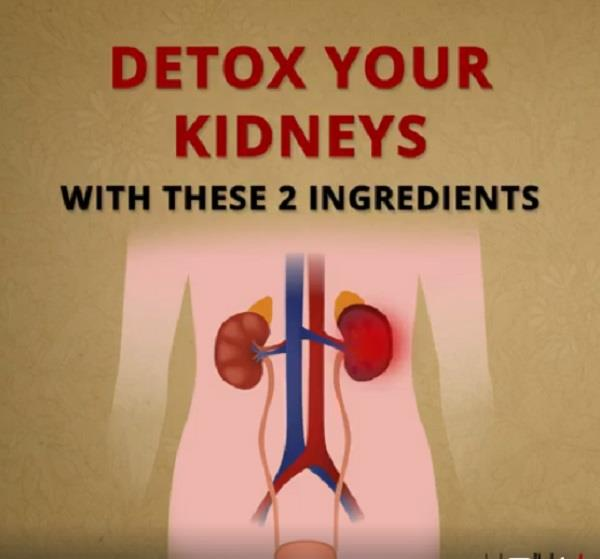 detox your kidneys with these 2 ingredients