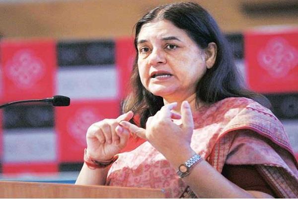 menka gandhi says death penalties for the culprits