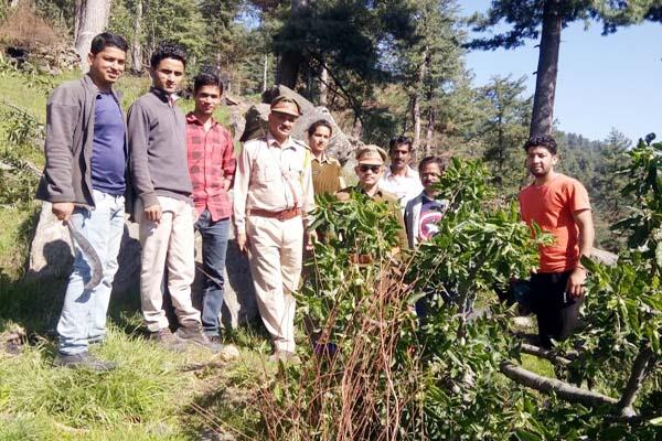 forest department big action on illegal ocupants