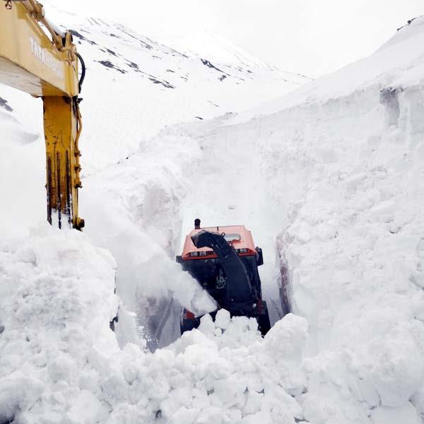 2 feet snowfall in rohtang pass