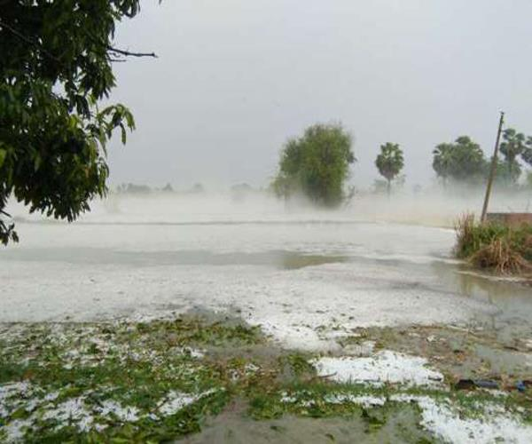 agra 45 people die due to typhoon heavy damage to crops