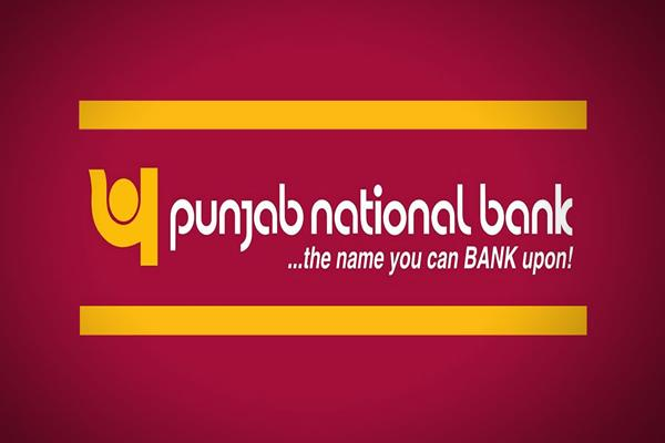 big wilful defaulters owe pnb rs 15 172 cr