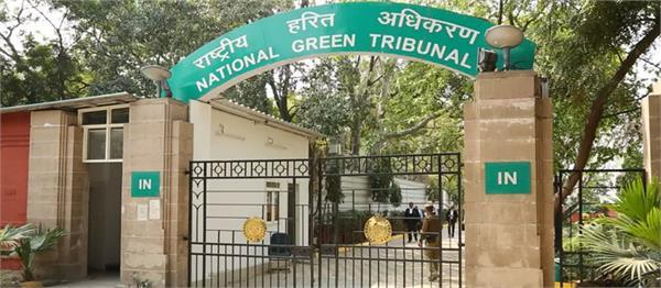 molasses leak ngt issues notices on aap s complaint against mill