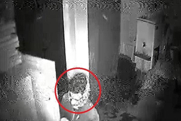 pnb in burglary of cctv footage viral