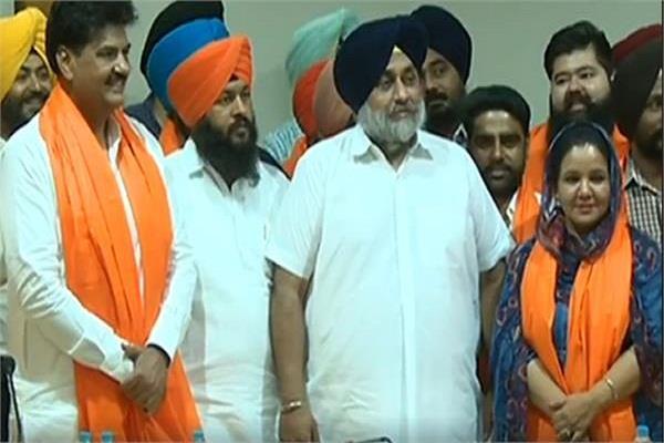 congress jolts rajinder joins akali dal including deepa colleagues