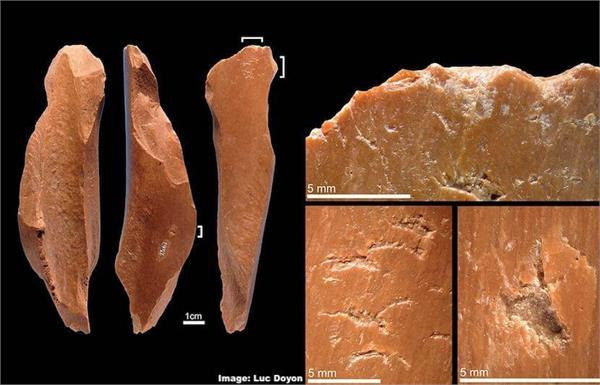 archaeologists discover china s oldest bone tool
