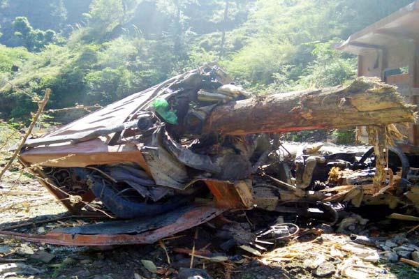 painful accident tree fall into the tipper death of conductor