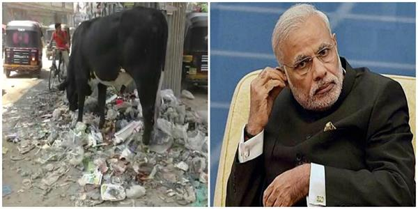 pm of the 15 most polluted cities of the world kashi