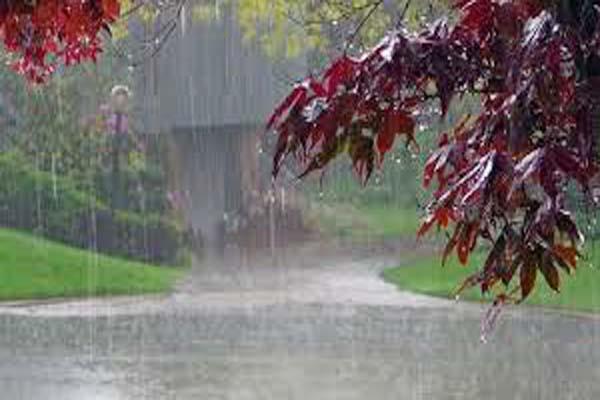 telaka rain farmers gardeners concerned