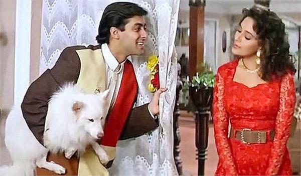 madhuri dixit pay much more than salman khan for film