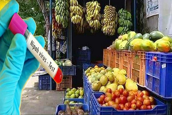 nipah virus uae stopped import of fruits vegetables from kerala