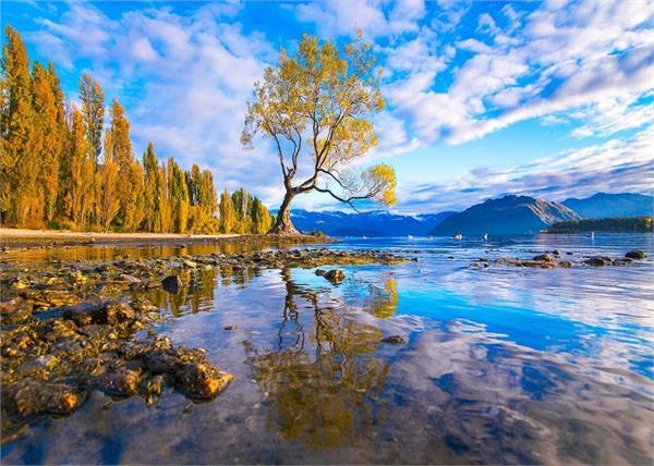 न्यूजीलैंड घूमने गए हैं तो जरूर घूमे ये 2 शहर, खूबसूरती कर देगी हैरान