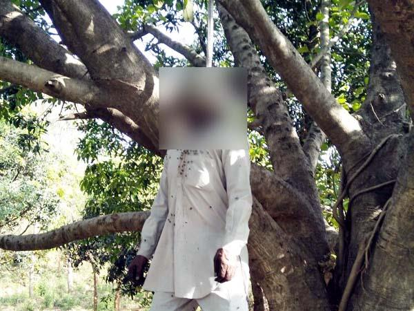deadbody hanged from tree police involved in investigation
