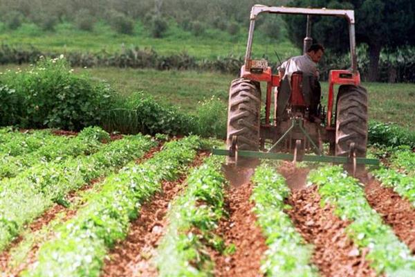 decision on the use of mnrega in agriculture sector