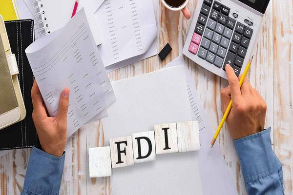 e commerce to increase fdi timeline